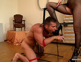 Mistress Mira flogs the dick and sack of her slave Totti