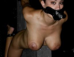 Watch Sasha Grey facially humiliate Trina Michaels
